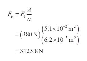A F F (5.1x10 m2 (380N6.2x10m2) 3125.8N