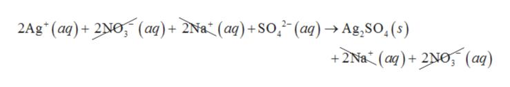 2Ag (aq)+2No,(aq)+ 2Na* (aq) +SO,(aq)Ag,SO,(s) +2Na (aq)2Ne, (aq)