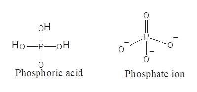 он P Но —Р—оН Phosphoric acid Phosphate ion