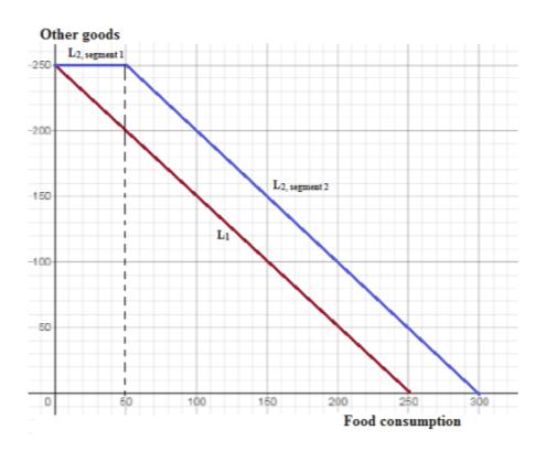 Other goods L -250 -200 L2 segment 2 150 L1 -100 50 100 150 200 250 Food consumption