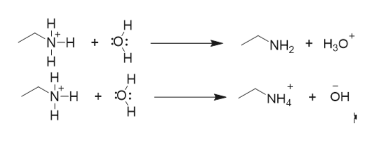 O: N-H Нао NH2 + + N-H OH + NH4 + I-z-IIz-1
