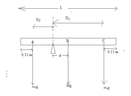 X1 X2 0.11 m 0.11 m d Mg mig m2g