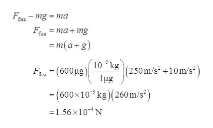 F-mg ma F, 3D та+ mg m(a+g) flea 10 kg (250m/s210m/s2 ug Fon (600ug) ea (600x10kg) (260m/s) 31.56 х10*N