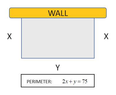 WALL X X Y 2x+y 75 PERIMETER:
