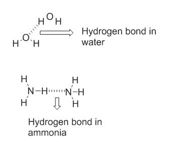 H Hydrogen bond in water -O H H Н Н N-H N-H Н H T Hydrogen bond in ammonia о.