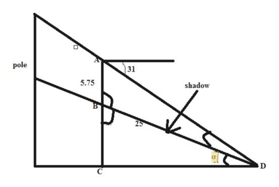 pole | 31 5.75 shadow 25