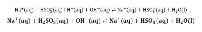 Na*(aq)HSO3 (aq)+H (aq) OH (aq)Na(aq) HSO3 (aq) +H20(I Na (aq)H2S03(aq) + OH (aq) = Na*(aq) HSO3 (aq) H20l)