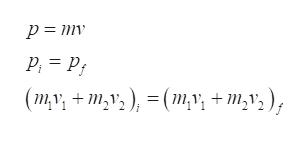 P P |(mv+m,v2) = (m,y, +m,v,),