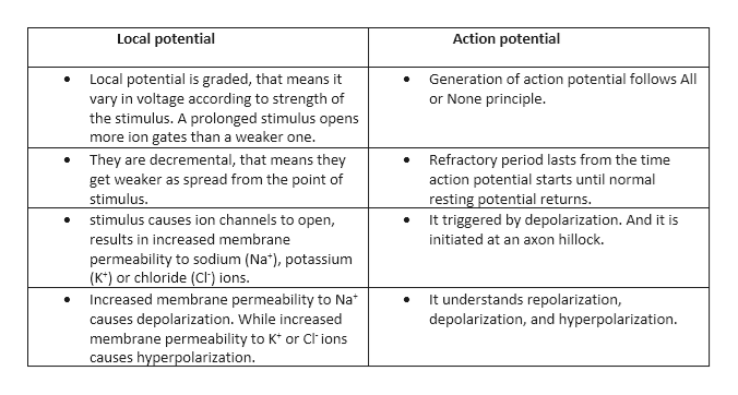 Action potential Local potential Local potential is graded, that means it vary in voltage according to strength of the stimulus. A prolonged stimulus opens more ion gates than a weaker one They are decremental, that means they get weaker as spread from the point of stimulus. stimulus causes ion channels to open, results in increased membrane Generation of action potential follows All or None principle. Refractory period lasts from the time action potential starts until normal resting potential returns. It triggered by depolarization. And it is initiated at an axon hillock. permeability to sodium (Na), potassium (K*) or chloride (Ch) ions. Increased membrane permeability to Na causes depolarization. While increased membrane permeability to K* or Clions causes hyperpolarization. It understands repolarization, depolarization, and hyperpolarization.