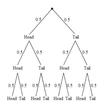 0.5 0.5 Head Tai 0.5 0.5 0.5 0.5 Head Tail Head Tail 0.5 0.5 0.5 0.5 0.5 0.5 0.5 0.5 Head Tail Head Tail Head Tail Head Tai