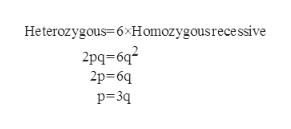 Heterozygous=6xHomozygousrece ssive 2pq-6q2 2p 6q p 3q