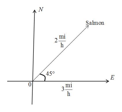 Salmon mi 2 450 E 0 mi 3 h