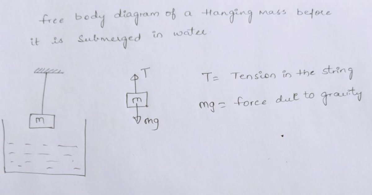 Answered  Draw A Free Body Diagram Of A Hanging U2026