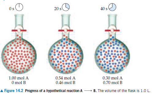 Os 40 s 1.00 mol A 0.54 mol A 0.46 mol B 0.30 mol A 0.70 mol B O mol B A Figure 14.2 Progress of a hypothetical reaction A B. The volume of the flask is 1.0 L.