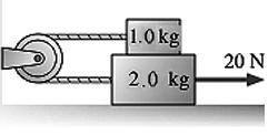 1.0 kg 20 N 2.0 kg