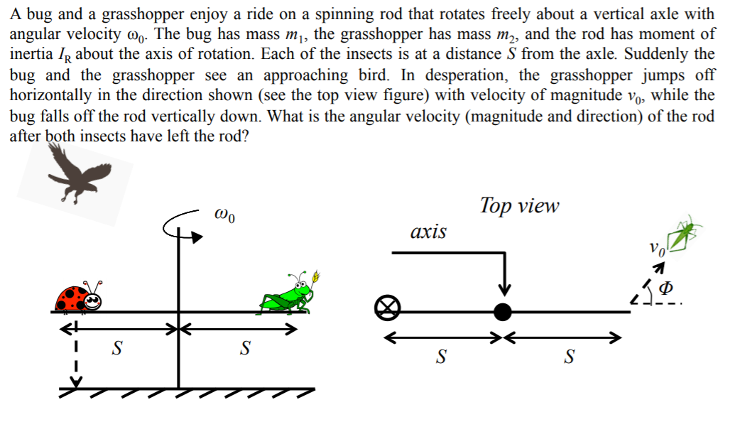 A bug and a grasshopper enjoy a ride on a spinning rod that rotates freely about a vertical axle with angular velocity @o. The bug has mass m¡, the grasshopper has mass m,, and the rod has moment of inertia IR about the axis of rotation. Each of the insects is at a distance S from the axle. Suddenly the bug and the grasshopper see an approaching bird. In desperation, the grasshopper jumps off horizontally in the direction shown (see the top view figure) with velocity of magnitude vo, while the bug falls off the rod vertically down. What is the angular velocity (magnitude and direction) of the rod after both insects have left the rod? Top view ахis Vo
