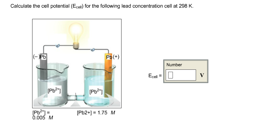 Calculate the cell potential (Ecell) for the following lead concentration cell at 298 K (-Pb Рь(+) Number Ecell [РЬ*] [РЬ?] Pb2- 0.005 M [Pb2+1 1.75 M