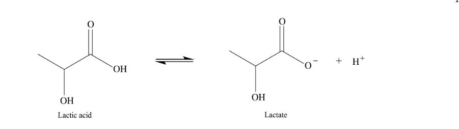 + H* ОН ОН ОН Lactate Lactic acid