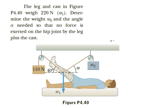 The leg and cast in Figure P4.40 weigh 220 N (w). Deter- mine the weight wz and the angle a needed so that no force is exerted on the hip joint by the leg plus the cast. 7 110 N 40% Figure P4.40