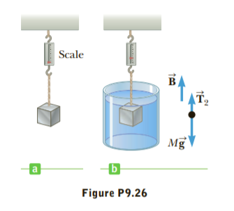 Scale в T2 Mg Figure P9.26