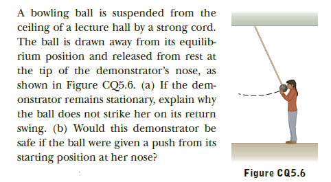 A bowling ball is suspended from the ceiling of a lecture hall by a strong cord. The ball is drawn away from its equilib- rium position and released from rest at the tip of the demonstrator's nose, as shown in Figure CQ5.6. (a) If the dem- onstrator remains stationary, explain why the ball does not strike her on its return swing. (b) Would this demonstrator be safe if the ball were given a push from its starting position at her nose? Figure CQ5.6