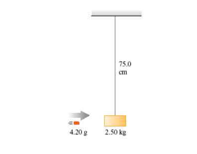 75.0 ст 4.20 g 2.50 kg