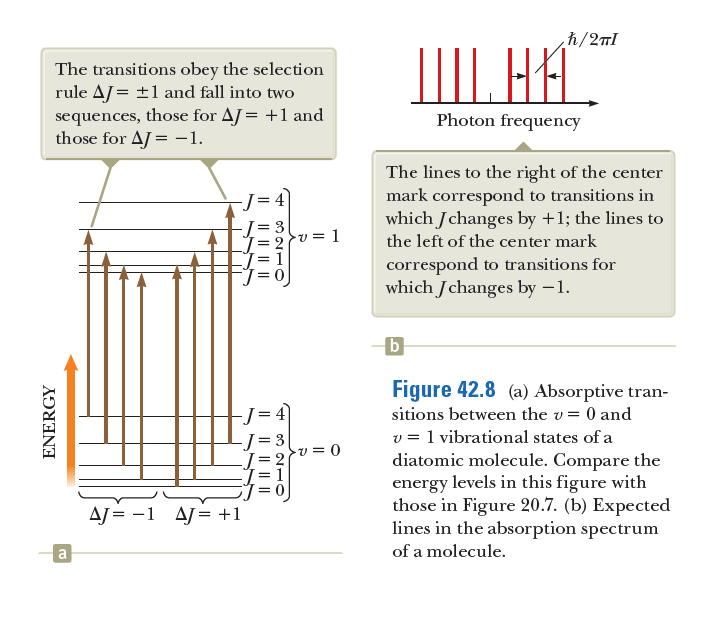 h/2nl The transitions obey the selection rule AJ = ±1 and fall into two sequences, those for AJ= +1 and those for AJ = -1. IIII. HA. Photon frequency The lines to the right of the center mark correspond to transitions in which Jchanges by +1; the lines to -J= 4 = 3 v = 1 the left of the center mark correspond to transitions for which Jchanges by –1. b Figure 42.8 (a) Absorptive tran- -J= 4 sitions between the v= 0 and v = 1 vibrational states of a diatomic molecule. Compare the energy levels in this figure with those in Figure 20.7. (b) Expected lines in the absorption spectrum -v = 0 AJ = -1 AJ= +1 a of a molecule. IL        I           ENERGY
