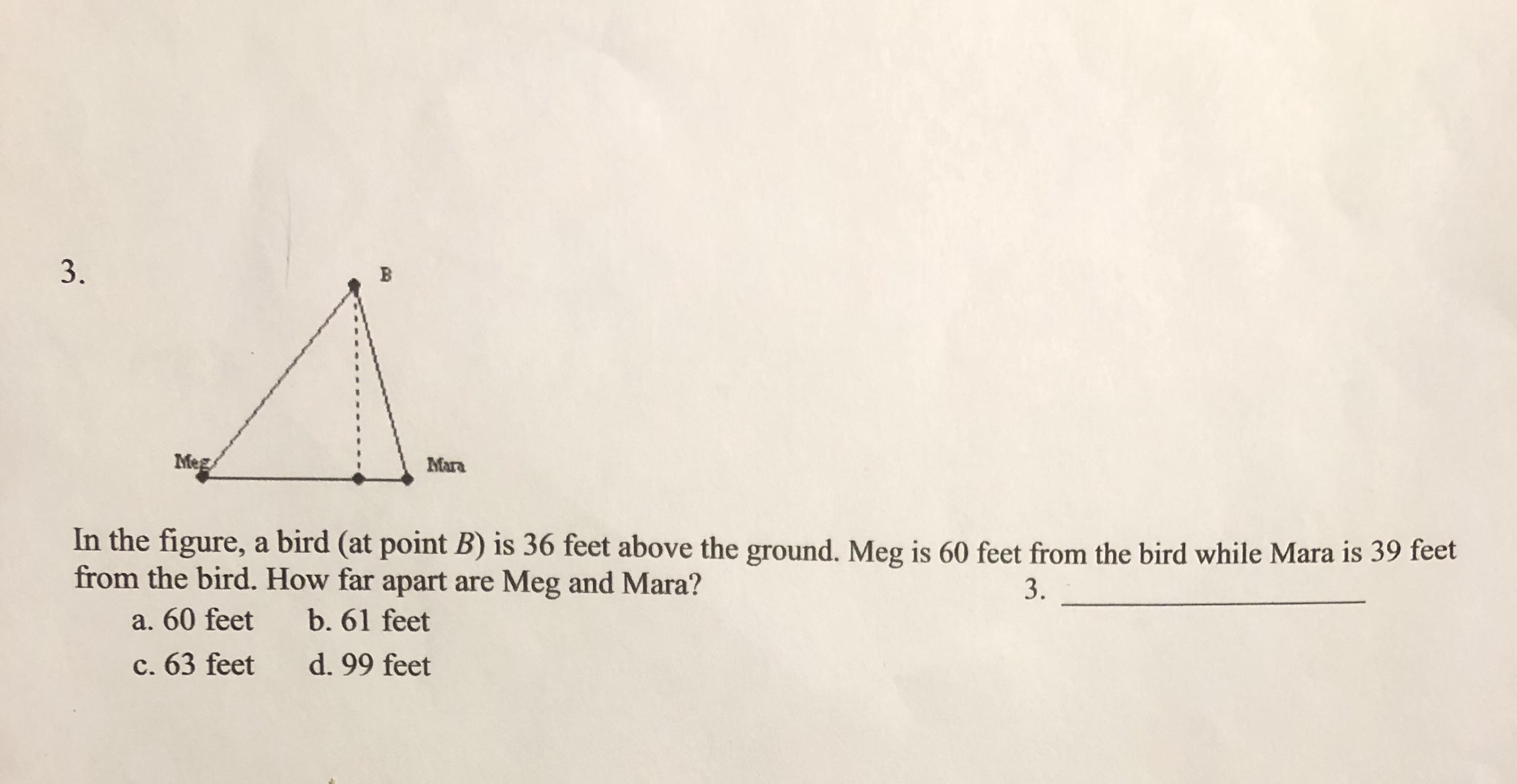 3. Meg Mara In the figure, a bird (at point B) is 36 feet above the ground. Meg is 60 feet from the bird while Mara is 39 feet from the bird. How far apart are Meg and Mara? 3. b. 61 feet a. 60 feet d. 99 feet c. 63 feet B