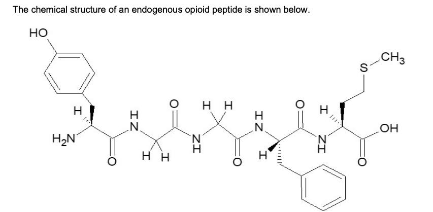 The chemical structure of an endogenous opioid peptide is shown below HO CH3 S H H H H H2N HO H H ZI I IZ ZI IZ I