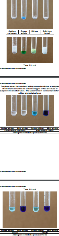 The photo shows the results of adding ammonia solution to smple