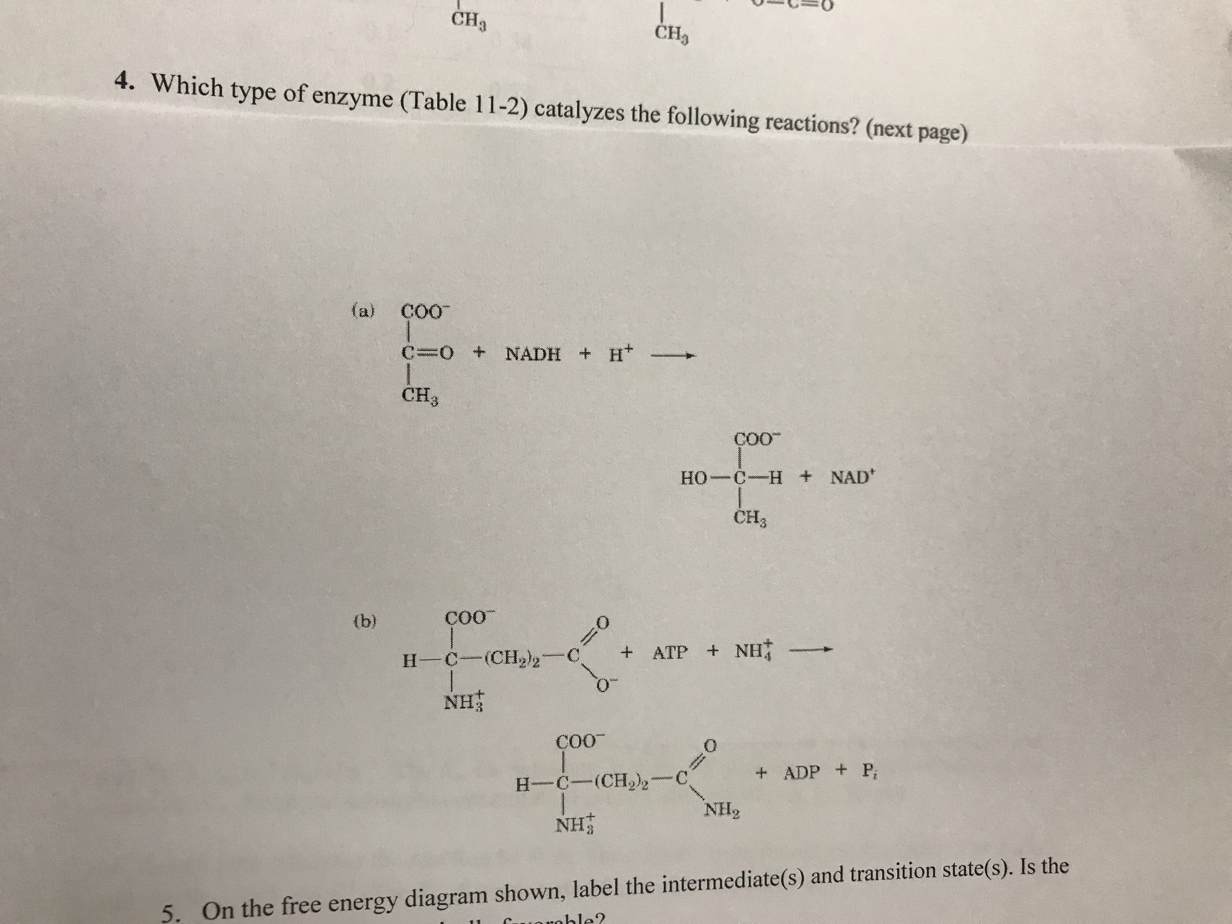 CHa CH 4. Which type of enzyme (Table 11-2) catalyzes the following reactions? (next page) (a) Co0 C=O + NADH + H+- CH3 Coo HH NAD CH3 coo ΝΗ Coo +ADP P NH2 NHİ 5. On the free energy diagram shown, label the intermediate(s) and transition state(s). Is the ble?